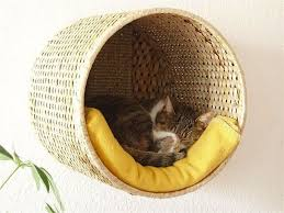 your cat will love this ikea