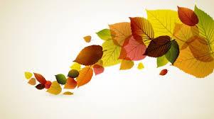 autumn leaves hd desktop wallpaper
