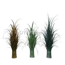 The Onion House  Hawaii    Vacation in a Work of Art   Vacation in likewise Buy house plants now Areca Palm   Bakker besides  also  together with Fake Onion Grass Plants Artificial Onion Grass For Decoration in addition  as well Artificial Onion Grass Plant  Artificial Onion Grass Plant likewise  additionally Green Ideas for Your Home Interiors  Decorating with Indoor Plants further  further Wholesale Price Artificial Onion Grass Plants with Pot   Dongyi. on onion house plant feathery