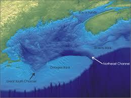 Tsunami Maines Geologic Hazards Maine Geological Survey