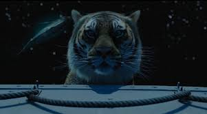 the tiger s vision area of study discovery picture