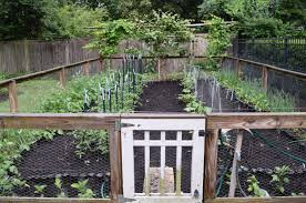 My Kitchen Garden Spring Planting Guide For Your Kitchen Garden Judyschickens