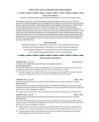 Logistics Account Executive Sample Resume Podarki Co