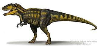 carcharodontosaurus size carcharodontosaurus facts dinosaurs pictures and facts