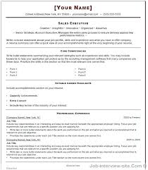 Professional Resume Format Interesting It Professional Resume Format Sales Template Word Free Top Within
