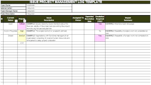 Project Management Issue Log Template Issue Log Sample 6