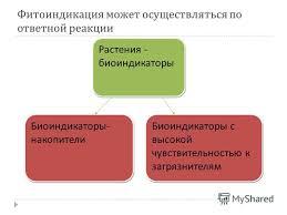 Презентация на тему Министерство общего и профессионального  4 Фитоиндикация может осуществляться