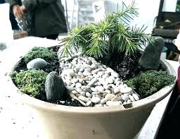 mini rock garden ideas container miniature gardening with mom design id miniature rock castles chapels fill garden plants