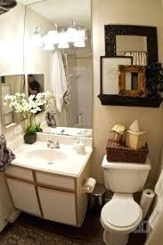 Apartment Bathroom Decorating Ideas Cool Inspiration
