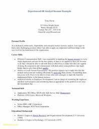 20 Entry Level Resume Profile Wwwauto Albuminfo