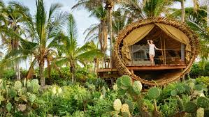 luxurious tree house hotel. Luxurious Tree House Hotel S