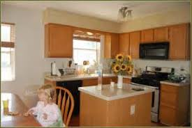 Small Picture Home Depot Kitchen Design Theedlos