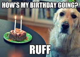 Memes Vault Sad Birthday Dog Memes via Relatably.com