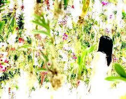 perennial cutting garden cutting flower garden cut flower garden plans cut flower gardening floating flower garden