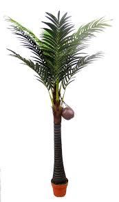 tree essay tree
