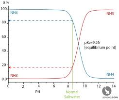 Unionized Ammonia Chart What Is Ammonia Nh3 Nh4 Seneye