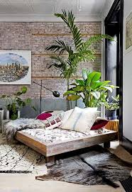 Best 25+ Living room plants ideas on Pinterest | Plant decor, Room with  plants and Plants indoor