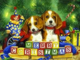 cute merry christmas wallpaper dogs.  Dogs Merry Christmas  Dogs U0026 Animals Background Wallpapers On Desktop Nexus  Image 1877566 For Cute Christmas Wallpaper M