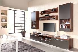 Wall Cabinets Living Room Wall Furniture For Living Room Magnificent Tv Unit Design Hall