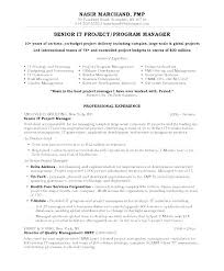 Entry Level Project Management Resume Blaisewashere Com