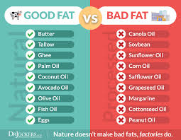 Image result for health fat images