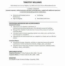 Carpenter Resume Example Pleasing Carpenter Resume Examples Best