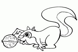 Kleurplaat Eekhoorn Dieren Kleurplaat Animaatjesnl