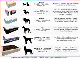 50 All Inclusive Beagle Puppy Weight Chart