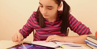 essay on management principles ppt