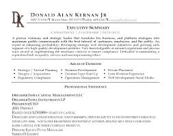 Sample Resume Business Development Manager Summary Examples For