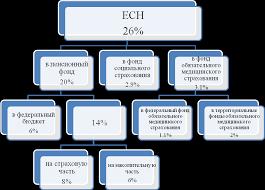 Реферат Теоретические основы Пенсионного Фонда РФ и его роль в  Теоретические основы Пенсионного Фонда РФ и его роль в проведении пенсионной реформы в РФ
