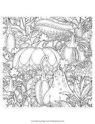 Secret Garden Coloring Pages Free Colouring Printable Fairy
