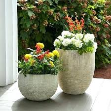 large flower boxes large flower pots outdoor planter window box planters succulent n big wooden