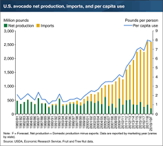 Avocado Price Chart 2018 Usda Ers Charts Of Note