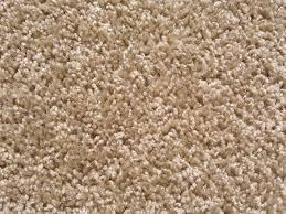 tan carpet floor. Tan Carpet Floor And Beige Comfortable Textured Rugs Residential P