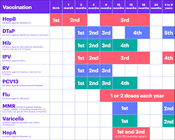 Immunization Age Chart 72 You Will Love Vaccination Schedule