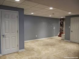 best basement lighting. Adorable Lighting Ideas For Basement With Modern Drop Ceiling Property Fireplace New In Best
