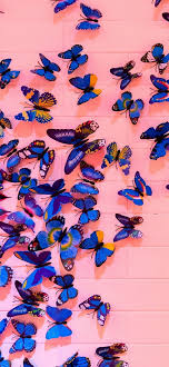 Butterfly Wallpaper Aesthetic Computer ...