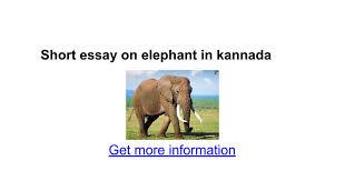 short essay on elephant in kannada google docs