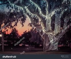Christmas Lights Kearns Christmas Lights Sunset Stock Photo Edit Now 1139836067