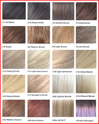 Redken Brown Color Chart Hairstyles Brunette Hair Color Charts Wonderful Medium Ash