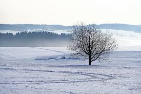Bildresultat för snö bilder gratis
