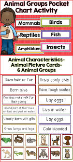 Animal Groups Animal Classification Animal Classification