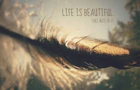 Life Is Beautiful Quotes Tumblr Best of Life Is Beautiful Take Note Of It Pictures Photos And Images For