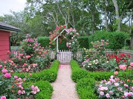 Small Picture Cottage garden design with roses Wilson Rose Garden