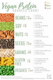 Free Printable 7 Types Of Vegan Protein Sources Chart