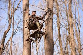 with so many hunting tree stands on the market it is tough to know which one you should get for your needs climbing tree stands ladder tree stands