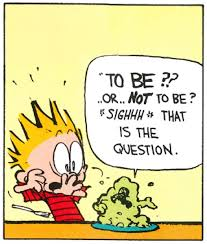 Image result for images of calvin and hobbes