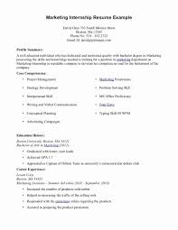 Internship Resume Examples Internship Resume Template Luxury Intern Resume Sample Resume 13
