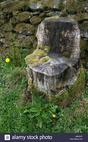 Tree Stump Seats Tree Stump Seat Taken In Cumbria Uk Stock Photo Royalty Free
